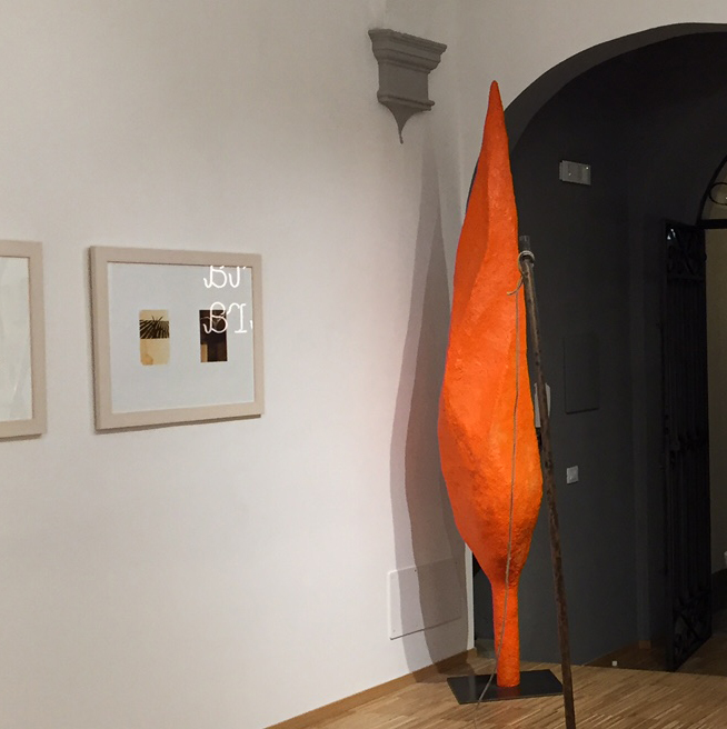 Maurizio Olivotto_Orange Cypress